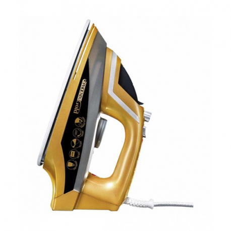 Phoenix Gold Steam Iron